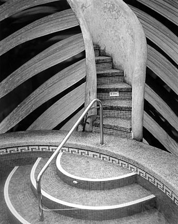 BW curving lines of palm fronds arch out from mosaic stairs at swimming pool